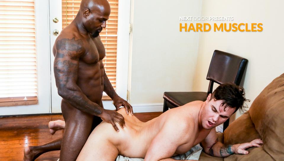 next-door-studios-hard-muscles